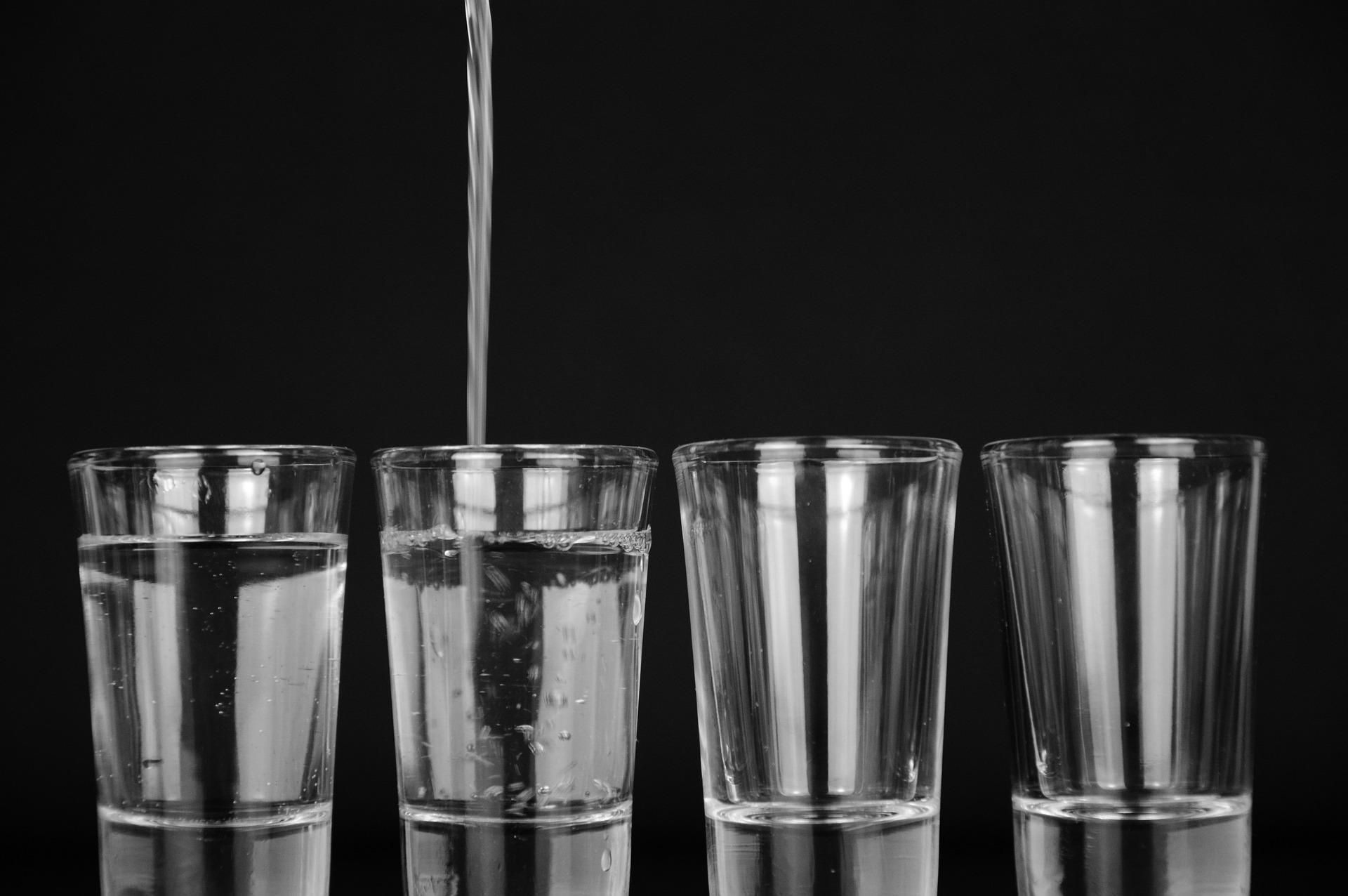 Tonic Water pur schmeckt nur den wenigsten - im Gin Tonic sieht das anders aus.