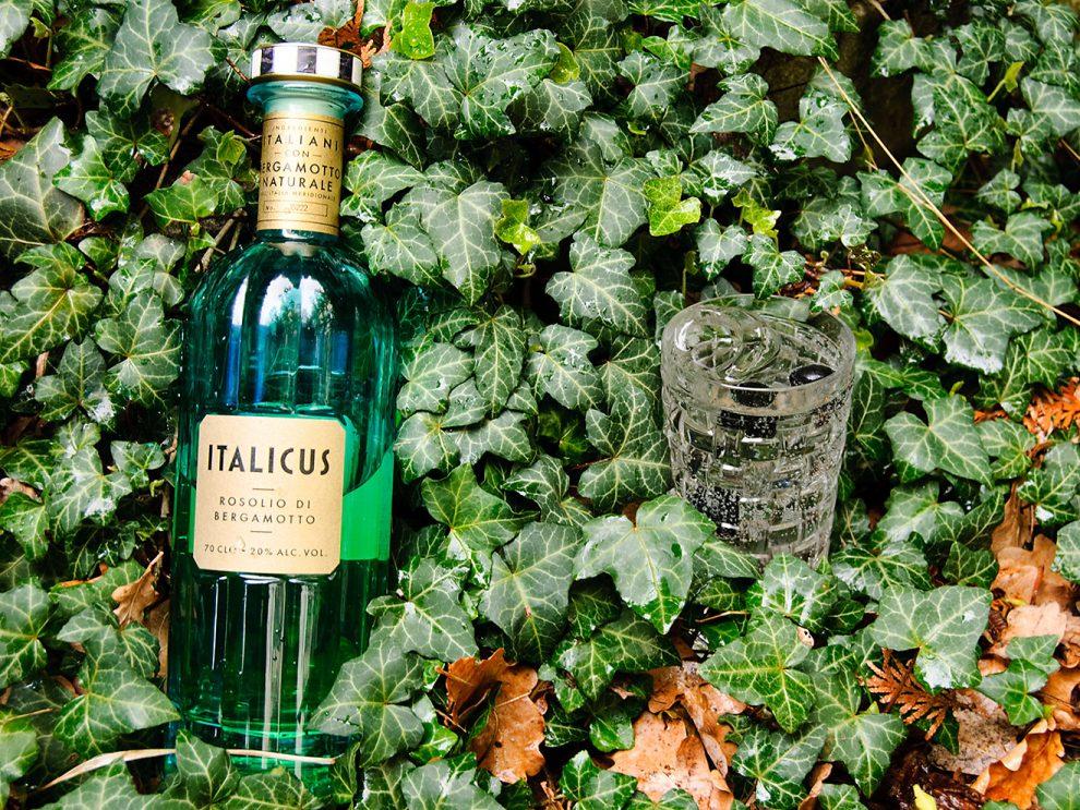 Italicus - Rosolio di Bergamotto in einem Vodka & Soda, garniert mit Oliven, an einem Bett aus Efeu.