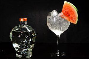 Allie Gin in einem Gin Tonic mit Melonen-Dekoration.