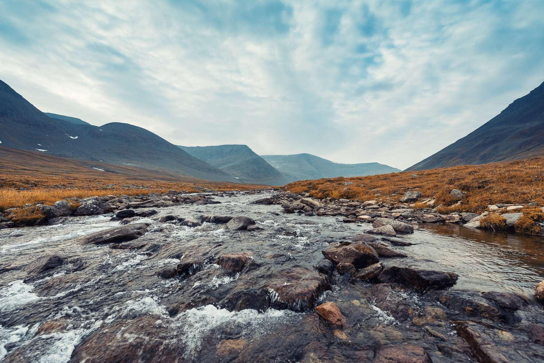 Aquavite oder Aqua Vitae bedeutet schlicht: Wasser des Lebens.