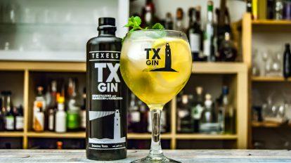 TX Gin im Stiekeltje - eine Gin & Ginger Ale mit Zitrone und Minze.
