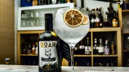 Boar Gin im Gin Tonic!