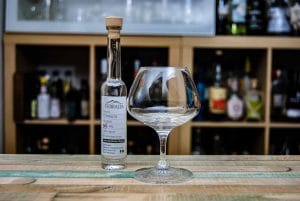 Terralta Tequila Blanco 55% in der Pur-Verkostung.