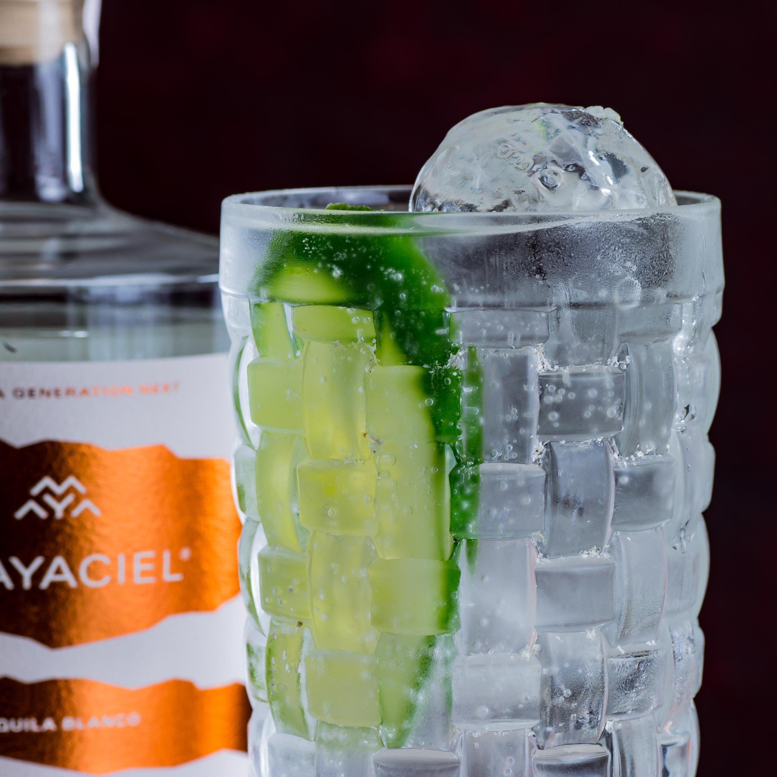 Mayaciel Tequila im Tequila & Tonic.